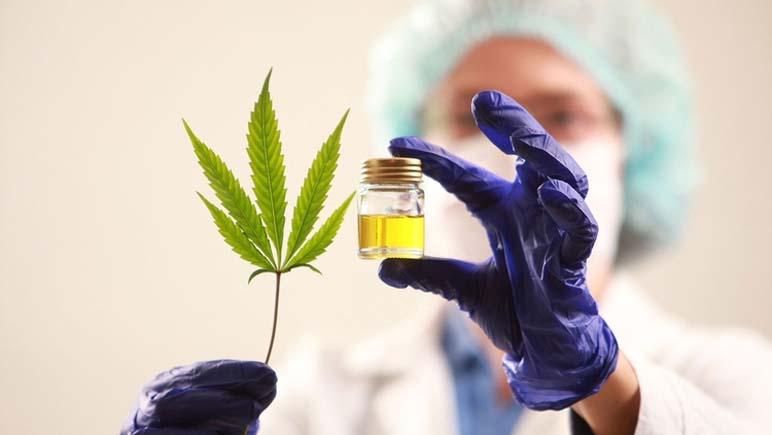 Se aprobó la creación de un Registro de Cultivos Terapeuticos