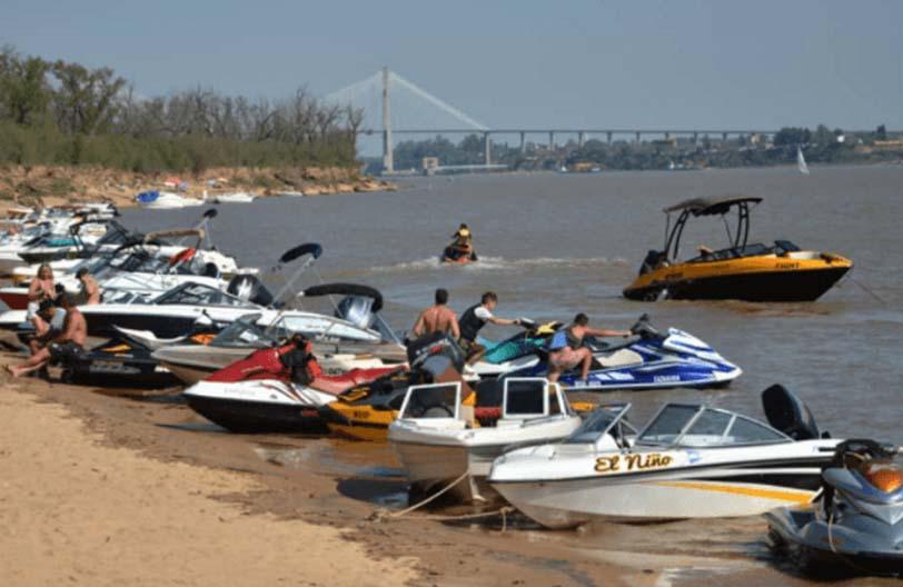 """Isla de Los Mástiles: un """"caso testigo"""" en la disputa por el destino del humedal"""